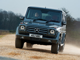 Mercedes-Benz G 350 BlueTec UK-spec (W463) 2010–12 pictures