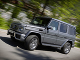 Mercedes-Benz G 65 AMG (W463) 2012 wallpapers
