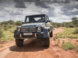 Mercedes-Maybach G 650 Landaulet (W463) 2017 wallpapers