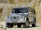 Photos of Mercedes-Benz G 500 (W463) 2008–12