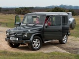 Pictures of Mercedes-Benz G 350 BlueTec UK-spec (W463) 2010–12