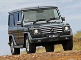 Pictures of Mercedes-Benz G 350 BlueTec AU-spec (W463) 2010–12