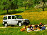 Mercedes-Benz 350 GD Turbodiesel (W463) 1992–93 wallpapers