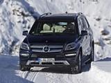 Mercedes-Benz GL 500 BlueEfficiency (X166) 2012 pictures