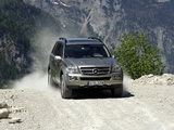 Pictures of Mercedes-Benz GL 320 CDI (X164) 2006–09