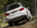 Pictures of Mercedes-Benz GL 500 BlueEfficiency (X166) 2012