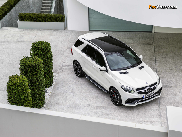 Mercedes-AMG GLE 63 S 4MATIC (W166) 2015 pictures (640 x 480)
