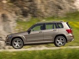 Images of Mercedes-Benz GLK 220 CDI BlueEfficiency (X204) 2012