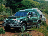 Images of Mercedes-Benz ML 320 Jurassic Park (W163) 1997