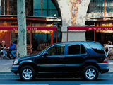 Images of Mercedes-Benz ML 320 (W163) 1997–2001