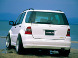 Images of WALD Mercedes-Benz ML 320 (W163) 1997–2001