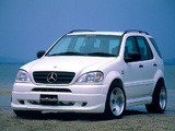 WALD Mercedes-Benz ML 320 (W163) 1997–2001 images