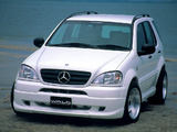 WALD Mercedes-Benz ML 320 (W163) 1997–2001 photos