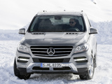 Mercedes-Benz ML 350 BlueTec (W166) 2011 images