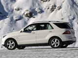 Mercedes-Benz ML 350 BlueTec (W166) 2011 photos