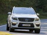 Mercedes-Benz ML 63 AMG (W166) 2012 photos