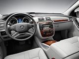 Images of Mercedes-Benz R 350 BlueTec (W251) 2010