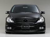 WALD Mercedes-Benz R-Klasse (W251) 2009–10 photos
