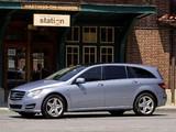 Mercedes-Benz R 350 BlueTec US-spec (W251) 2010 photos