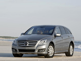 Mercedes-Benz R 350 CDI (W251) 2010 pictures