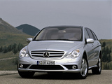 Photos of Mercedes-Benz R 500 (W251) 2005–10
