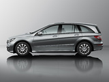 Photos of Mercedes-Benz R 350 (W251) 2010
