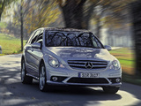 Pictures of Mercedes-Benz R 63 AMG (W251) 2007–10