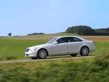 Mercedes-Benz S 320 CDI BlueEfficiency (W221) 2008–09 images