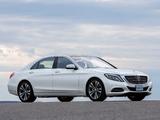 Mercedes-Benz S 350 BlueTec (W222) 2013 images