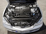 Pictures of Mercedes-Benz S 250 CDI BlueEfficiency (W221) 2010–13