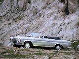 Mercedes-Benz S-Klasse Cabriolet (W111/112) wallpapers