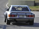 Images of Mercedes-Benz 500 SL Rallye (R107) 1980