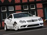 Images of Ernst Car Design Mercedes-Benz SL 500 (R230) 2009