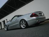 WALD Mercedes-Benz SL-Klasse (R230) 2001–05 photos