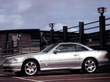 Mercedes-Benz SL 600 Silver Arrow (R129) 2002 images