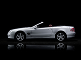 Photos of Mercedes-Benz SL 500 (R230) 2005–08