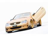 Photos of FAB Design Mercedes-Benz SL 600 Widebody (R230) 2008