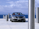 Images of Mercedes-Benz SLK 200 Kompressor (R171) 2008–11