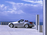 Images of Mercedes-Benz SLK 200 Kompressor (R171) 2008–11