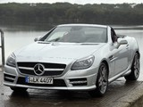 Images of Mercedes-Benz SLK 250 CDI AMG Sports Package (R172) 2011