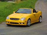Mercedes-Benz SLK 32 AMG US-spec (R170) 2001–04 images
