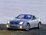 Mercedes-Benz SLK 32 AMG (R170) 2001–04 photos