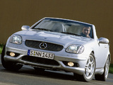 Mercedes-Benz SLK 32 AMG (R170) 2001–04 wallpapers