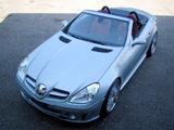 FAB Design Mercedes-Benz SLK-Klasse (R171) 2004–08 photos