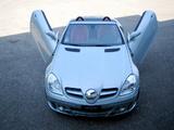 FAB Design Mercedes-Benz SLK-Klasse (R171) 2004–08 pictures