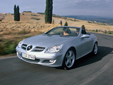 Mercedes-Benz SLK 350 (R171) 2004–07 wallpapers