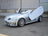 FAB Design Mercedes-Benz SLK-Klasse (R171) 2004–08 wallpapers