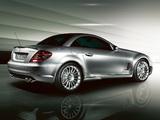 Mercedes-Benz SLK 55 AMG Special Edition (R171) 2006 photos