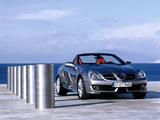 Mercedes-Benz SLK 200 Kompressor (R171) 2008–11 images