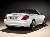 Mercedes-Benz SLK 350 2LOOK Edition (R171) 2009 images